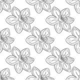 Sömlös vektorblommamodell, bakgrund med blommor, över den gråa bakgrunden Linje teckning Royaltyfri Fotografi