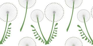 Sömlös vektormodell med blommor Bakgrund med gråa maskrosor och sidor på den vita bakgrunden Arkivbilder