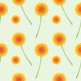 Sömlös vektormodell med blommor Bakgrund med orange maskrosor på den gråa bakgrunden Arkivfoto