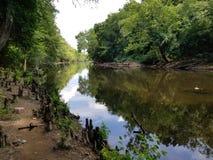Smołowcowy rzeki bitwy park obrazy royalty free