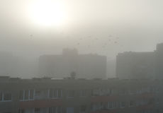 smog stockfotografie