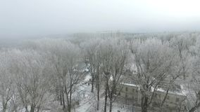 Smog i staden i vintern arkivfilmer