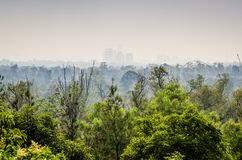Smog nad Meksyk, widok nad Chapultepec parkiem zdjęcia stock