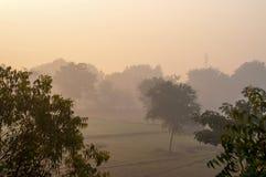Smog w ranku zdjęcia royalty free