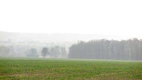 Smoglandschaft lizenzfreie stockbilder