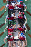 smok łódkowata rasa Zdjęcie Royalty Free