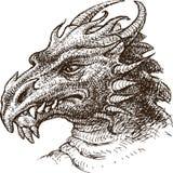 Smok ilustracja wektor
