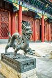 Smok brązowa statua - Zakazujący miasto, Pekin, Chiny Fotografia Stock