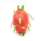Smok owoc na bielu Zdjęcia Stock