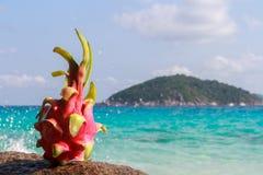 Smok owoc na piasku przeciw turkus wodzie Similan wyspy Tajlandia Tropikalny wakacje pojęcie Zdjęcie Stock