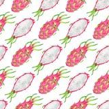 Smok owocowa bezszwowa deseniowa powtórka na bielu ilustracja wektor