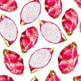 Smok owocowej akwareli bezszwowy wzór Jaskrawa tropikalna owoc na białym tle royalty ilustracja
