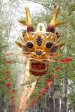 Smok piękna Chińska Kania Obraz Royalty Free