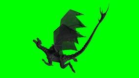 Smok w locie - zielony ekran Fotografia Royalty Free