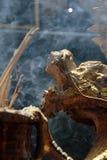 Smoka mosiężny kadzidłowy palnik z dymem Fotografia Stock