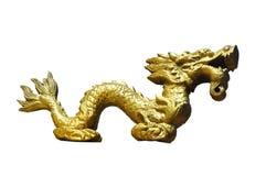 smoka złoto Fotografia Stock