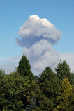 Smoke. A mushroom cloud behind trees royalty free stock photos