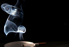 Free Smoke Royalty Free Stock Image - 164006
