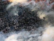 Smoke. Series of the textures (smoke royalty free stock image