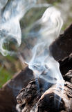Smoke. White smoke rises over the bonfire Royalty Free Stock Image