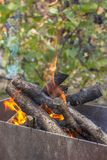 Smoke bonfire during barbecue. Flame campfire in the forest. Autumn leisure near the grill. The crackling of logs in the fire. Fire in the open air. Camping by stock photos