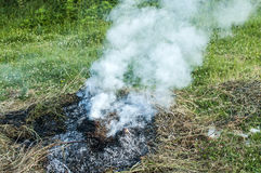 Smoke from burning dry grass Royalty Free Stock Photo