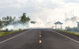 Smoke from burning dry grass on the roadside Stock Images