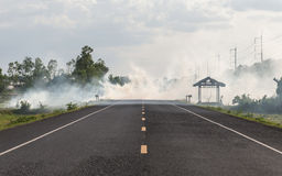 Smoke from burning dry grass on the roadside Stock Photos