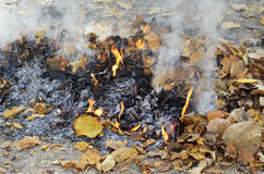 Smoke from burning leaves Royalty Free Stock Images