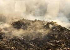 Smoke from burning leaves. stock image