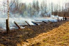 Smoke After Bushfire Stock Images