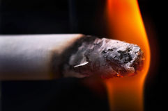 Smoke and cigarettes. Close-up Stock Photos
