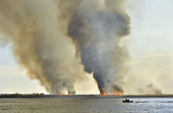 Smoke cloud from the large fire  on the lake Royalty Free Stock Photos