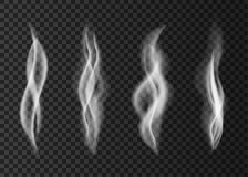 Smoke  from a cup of coffee or tea. Royalty Free Stock Image