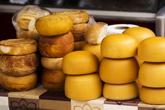 Smoke-dried cheese Stock Images