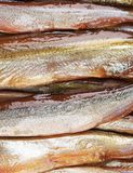 Smoke-dried fish close up. Royalty Free Stock Photos