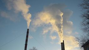 Smoke from factory chimney rises vertically upwards against the blue sky, energy and air pollution, windless weather. stock footage
