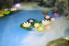 Smoke-filled lotus pool Stock Photos