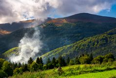 Smoke from the fire in forest. Mountainous summer landscape. environmental problem and ecology disaster of Carpathian countryside Royalty Free Stock Photography