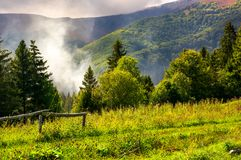 Smoke from the fire in forest. Mountainous summer landscape. environmental problem and ecology disaster of Carpathian countryside Stock Images