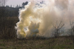 Smoke grenade exploded Royalty Free Stock Images