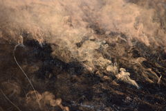 Smoke on the ground Royalty Free Stock Photography