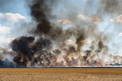 Smoke in harvested field catching fire. Clouds of black smoke in an harvested field catching fire Stock Image