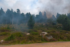 Smoke in Harz, Germany. Royalty Free Stock Image