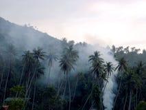 Smoke Island. Some smoke over the palms of Koh Phangan Thailand stock photography