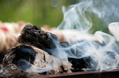 Smoke and kebab. White smoke rises over the bonfire and kebab Royalty Free Stock Photography
