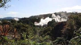 Smoke over Te Puia stock footage