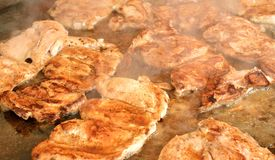 Roasted pork meat on grill Royalty Free Stock Photo