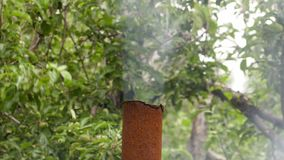 The smoke from the rusty metal pipe on the background of Apple trees.  stock video