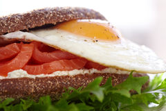 Smoke salmon, cream cheese and egg sandwich Royalty Free Stock Image